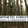 Synthetic-Forests